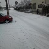 すごーい雪